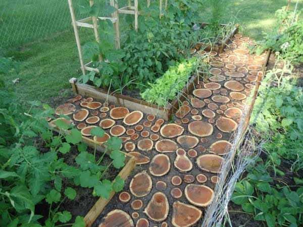 ideias para um jardim bonito: fazer um bonito caminho no jardim com restos de troncos de madeira