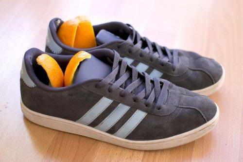 laranja-mau-cheiro-sapatos-500x333