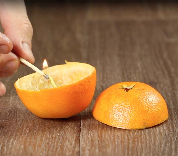 tangerina5